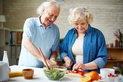 Preparing vegetable salad Stock Image
