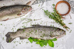 Preparing whole trout for grill in the garden Stock Photography