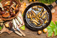 Preparing wild mushrooms to frying Royalty Free Stock Images