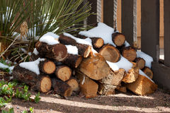 Preparing the winter time. Some stacked Firewood with snow royalty free stock images