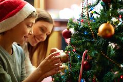 Preparing xmas tree Royalty Free Stock Photos
