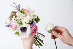 Prepering-Frühlingsblumenstrauß in den Händen Stockbilder