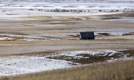 Preria krajobraz w zimie Zdjęcia Royalty Free