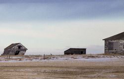 Preria krajobraz w zimie Obraz Stock