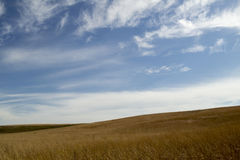 Preria krajobraz z niebieskim niebem Obraz Royalty Free