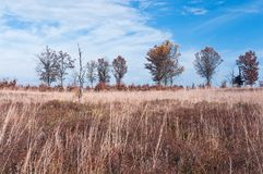 Preryjny i Sawannowy jesień krajobraz Obrazy Stock