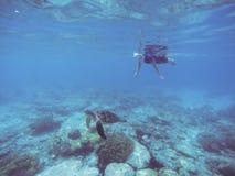 Presa d'aria con la tartaruga di mare La donna nuota undersea nel costume di nuoto e nella maschera del interamente fronte fotografia stock libera da diritti