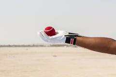Presa del fermo della palla rossa con le mani Fotografie Stock Libere da Diritti