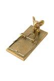Presa del mouse dell'oro. immagini stock libere da diritti