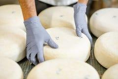 Presa della ruota del formaggio fresco fotografia stock libera da diritti