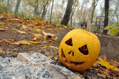 Presa-oâ-lanterna di Halloween Immagini Stock Libere da Diritti