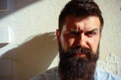 Presa orgoglio e della cura nella barba Uomo barbuto con capelli alla moda all'aperto Uomo bello con la barba ed i baffi di modo fotografia stock libera da diritti