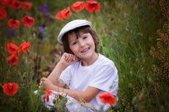 Preschool child in a poppy field, springtime Royalty Free Stock Photo
