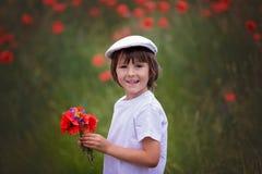 Preschool child in a poppy field, springtime Stock Photo