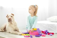 Preschool dziewczyna bawić się zabawki w pokoju z psem Conce obrazy stock