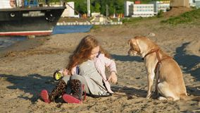 Girl preschool girl on the beach feeds the dog. Spring. Preschool girl with long red wavy hair in warm clothes sitting on the sand on the beach feeds and strokes stock video footage