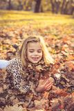 Happy little girls on fallen leaves. royalty free stock images