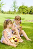 Preschool sisters in garden Royalty Free Stock Photos