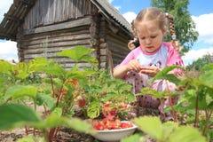 Preschooler blonde girl gathering home-grown Royalty Free Stock Images