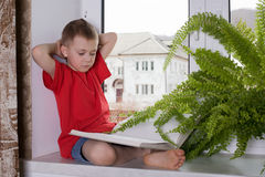 Preschooler boy reading a book Stock Images