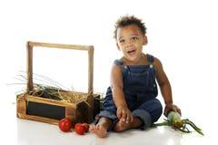 Preschooler with Garden Veggies Royalty Free Stock Images
