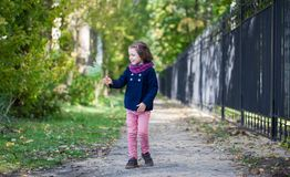 Preschooler girl in autumn park with maple leaves. Young toddler girl walking outdoor Stock Photo