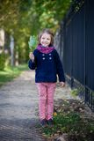 Preschooler girl in autumn park with maple leaves. Young toddler girl walking outdoor Stock Photography