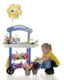 Preschooler's Flower Stand Stock Images