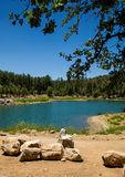 Prescott Lake Summer. A peaceful summer's day on Goldwater Lake in Prescott Arizona with the forest and the blues of the lake against a deep blue sky Stock Image