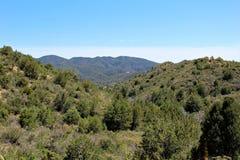 Prescott National Forest Arizona, Förenta staterna Royaltyfria Foton