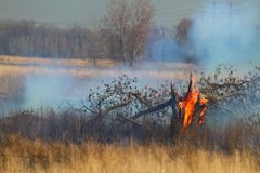Prescribed Burn of grass land Stock Photography
