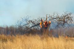 Prescribed Burn of grass land Royalty Free Stock Images