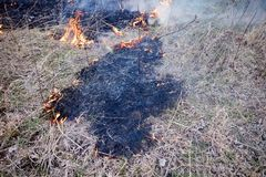 Prescribed controlled burn to create a firebreak Royalty Free Stock Photo