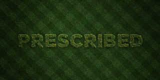 PRESCRIBED - fresh Grass letters with flowers and dandelions - 3D rendered royalty free stock image Stock Photos