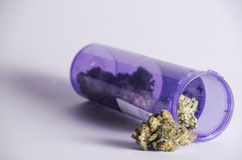 Prescription jar with Marijuana. A Prescription bottle full of marijuana Royalty Free Stock Photos