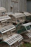 Prese 3 dell'aragosta Fotografie Stock Libere da Diritti