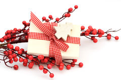 Present and berries Stock Image