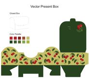 Present Box Stock Image