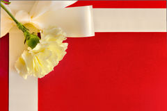Present Box with a Carnation. A Present Box with an off white  Carnation dressed on the top Stock Photo