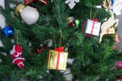 Present box decor with pine tree Royalty Free Stock Photos