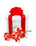 Present box with red bow and red gladiolus flowers over white Royalty Free Stock Photos