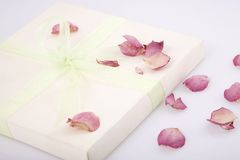 Present box with rose petals Royalty Free Stock Photo