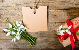 Present box with snowdrop flowers and an empty card Royalty Free Stock Image