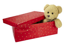 Present box teddy bear  birthday christmas Royalty Free Stock Images