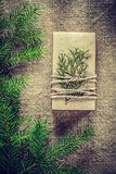 Present box thuya fir tree branch on bagging background Royalty Free Stock Images