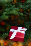 Present in christmas lights Royalty Free Stock Photography
