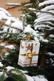 Present in a christmas tree Royalty Free Stock Image