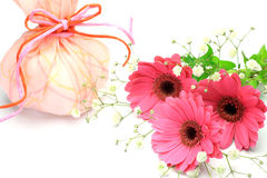 Present  and gerbera Stock Photos