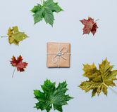 Present gift and autumn maple leaves Royalty Free Stock Photography