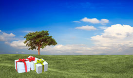 Present on grassy background. Stock Images